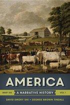 AMERICA: A NARRATIVE HISTORY V1